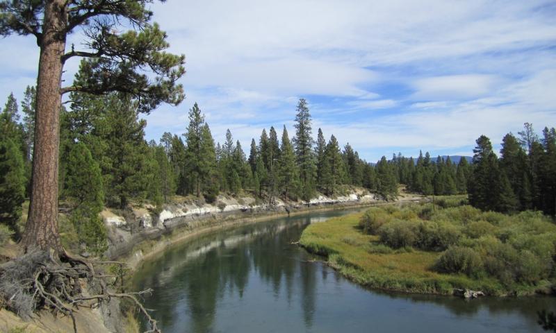 Oregon State Parks La Pine State Park Alltrips