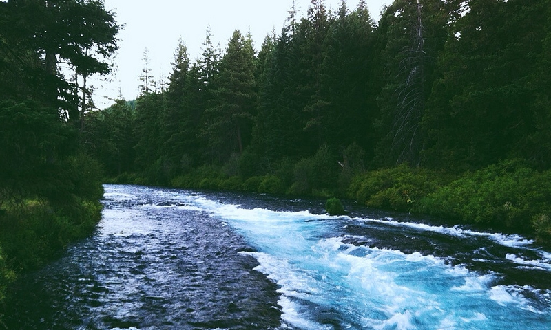 Metolius river oregon fly fishing camping boating alltrips for House of metolius