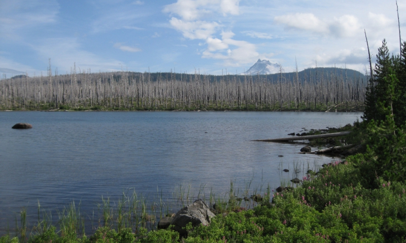 Olallie lake oregon fishing camping boating alltrips for Fish lake oregon