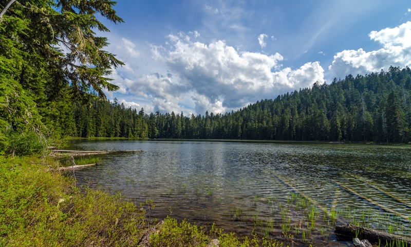 Twin Lakes Oregon Fishing Camping Boating Alltrips