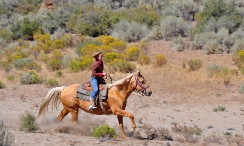 Bend Oregon Kids Horseback Riding